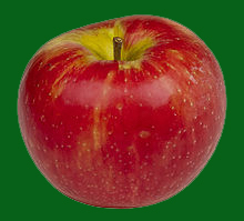 220px Honeycrisp Apple copy
